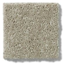 Shaw Floors Value Collections Newbern Classic 12′ Net Fossil 00761_E9198