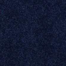 Shaw Floors Value Collections Newbern Classic 12′ Net Darkest Denim 55402_E9198