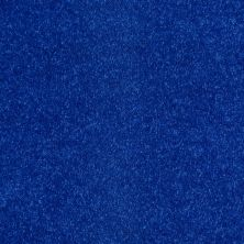 Shaw Floors Value Collections Newbern Classic 12′ Net Cobalt 55453_E9198