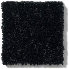 Shaw Floors Value Collections Newbern Classic 12′ Net Coal Black 55502_E9198