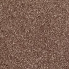 Shaw Floors Value Collections Newbern Classic 12′ Net Driftwood 55720_E9198