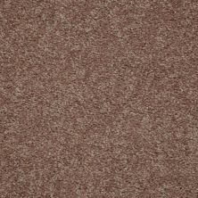 Shaw Floors Value Collections Newbern Classic 12′ Net Candied Truffle 55750_E9198