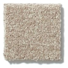 Shaw Floors Value Collections Newbern Classic 12′ Net Plaster 55752_E9198