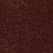 Shaw Floors Value Collections Newbern Classic 12′ Net Coffee 55755_E9198