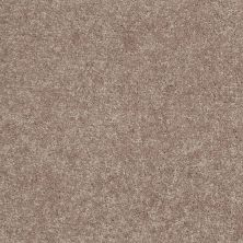 Shaw Floors Value Collections Newbern Classic 12′ Net Taupe Mist 55792_E9198
