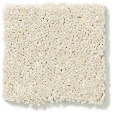 Shaw Floors Value Collections Newbern Classic 15′ Net Crisp Linen 00109_E9199