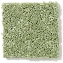 Shaw Floors Value Collections Newbern Classic 15′ Net Going Green 00330_E9199