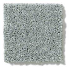 Shaw Floors Value Collections Newbern Classic 15′ Net Haze 00531_E9199