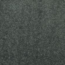 Shaw Floors Value Collections Newbern Classic 15′ Net Steel Beam 00534_E9199