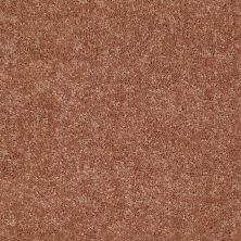 Shaw Floors Value Collections Newbern Classic 15′ Net Sunburst 00630_E9199