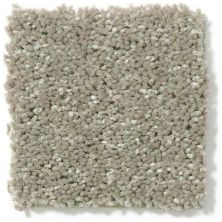 Shaw Floors Value Collections Newbern Classic 15′ Net Suede 00731_E9199