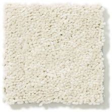 Shaw Floors Value Collections Newbern Classic 15′ Net Ivory Tint 55101_E9199