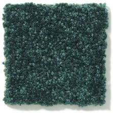 Shaw Floors Value Collections Newbern Classic 15′ Net Polo 55301_E9199
