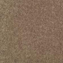 Shaw Floors Value Collections Newbern Classic 15′ Net Driftwood 55720_E9199