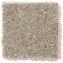 Shaw Floors Value Collections Newbern Classic 15′ Net Taupe Mist 55792_E9199