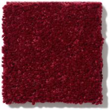 Shaw Floors Value Collections Newbern Classic 15′ Net Crimson 55803_E9199