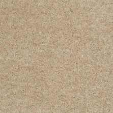 Shaw Floors Value Collections Fielder's Choice 12 Net Adobe 00103_E9205