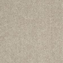 Shaw Floors Value Collections Fielder's Choice 12 Net Misty Taupe 00105_E9205