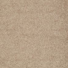 Shaw Floors Value Collections Fielder's Choice 12 Net Soapstone 00107_E9205