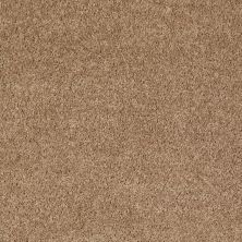 Shaw Floors Value Collections Fielder's Choice 12 Net Cider 00202_E9205