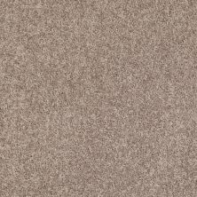 Shaw Floors Value Collections Fielder's Choice 12 Net Aloe 00300_E9205