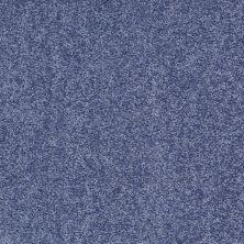 Shaw Floors Value Collections Fielder's Choice 12 Net Castaway 00400_E9205