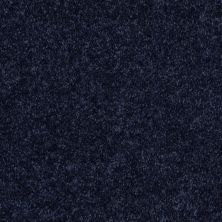 Shaw Floors Value Collections Fielder's Choice 12 Net Evening Sky 00403_E9205