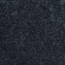 Shaw Floors Value Collections Fielder's Choice 12 Net Blue Jeans 00420_E9205