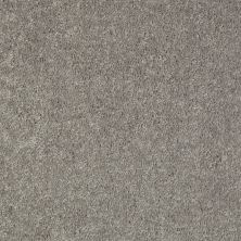 Shaw Floors Value Collections Fielder's Choice 12 Net Ink Spot 00501_E9205
