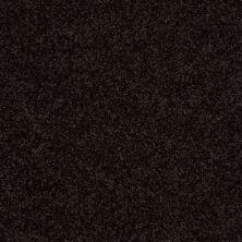 Shaw Floors Value Collections Fielder's Choice 12 Net Armour 00502_E9205