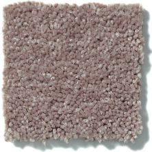 Shaw Floors Value Collections Fielder's Choice 12 Net Hearth Stone 00700_E9205