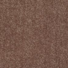 Shaw Floors Value Collections Fielder's Choice 12 Net Landslide 00702_E9205