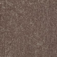 Shaw Floors Value Collections Fielder's Choice 12 Net Shale 00703_E9205