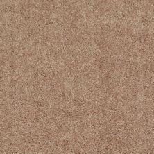 Shaw Floors Value Collections Fielder's Choice 12 Net Eagles Nest 00704_E9205