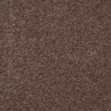 Shaw Floors Value Collections Fielder's Choice 12 Net Molasses 00710_E9205