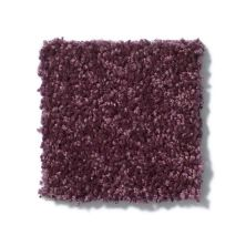 Shaw Floors Value Collections Fielder's Choice 12 Net Royal Purple 00902_E9205