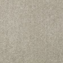 Shaw Floors Value Collections Dyersburg Classic 12 Net Antique Silk 00131_E9206