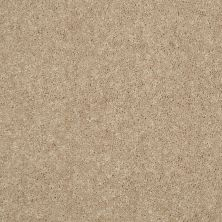 Shaw Floors Value Collections Dyersburg Classic 12 Net Straw Hat 00260_E9206