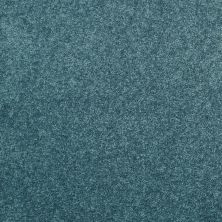 Shaw Floors Value Collections Dyersburg Classic 12 Net Ocean 00430_E9206