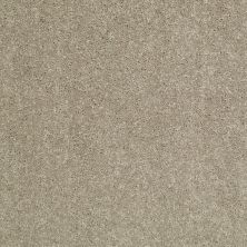 Shaw Floors Value Collections Dyersburg Classic 12 Net Fossil 00761_E9206