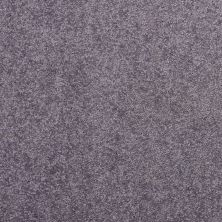 Shaw Floors Value Collections Dyersburg Classic 12 Net Violet Crush 00930_E9206