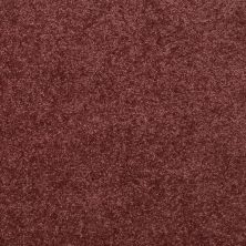 Shaw Floors Value Collections Dyersburg Classic 12 Net Radiant Orchid 00931_E9206