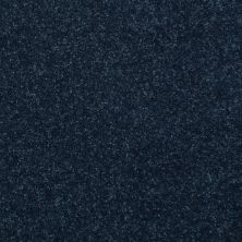 Shaw Floors Value Collections Dyersburg Classic 12 Net Darkest Denim 55402_E9206
