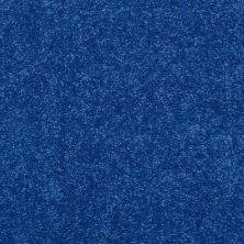 Shaw Floors Value Collections Dyersburg Classic 12 Net Cobalt 55453_E9206