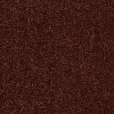 Shaw Floors Value Collections Dyersburg Classic 12 Net Coffee 55755_E9206