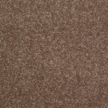 Shaw Floors Value Collections Dyersburg Classic 12 Net Winter Wheat 55791_E9206