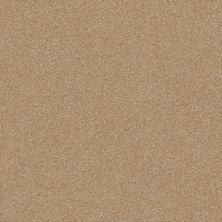 Shaw Floors Luxuriant Mountain Lion 00166_E9253