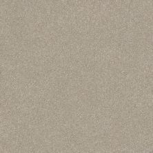 Shaw Floors Foundations Luxuriant Smoke Signal 00170_E9253