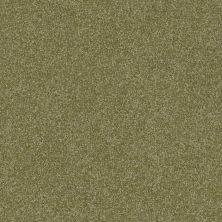 Shaw Floors Luxuriant Sea Grass 00361_E9253