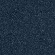 Shaw Floors Luxuriant Riptide 00461_E9253